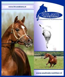 F&M Arabians